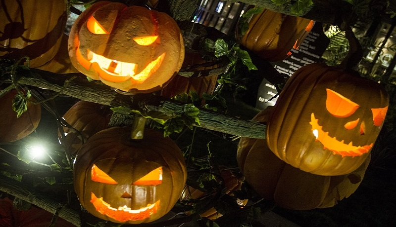 Halloween – przejaw bałwochwalstwa  i utraty wiary